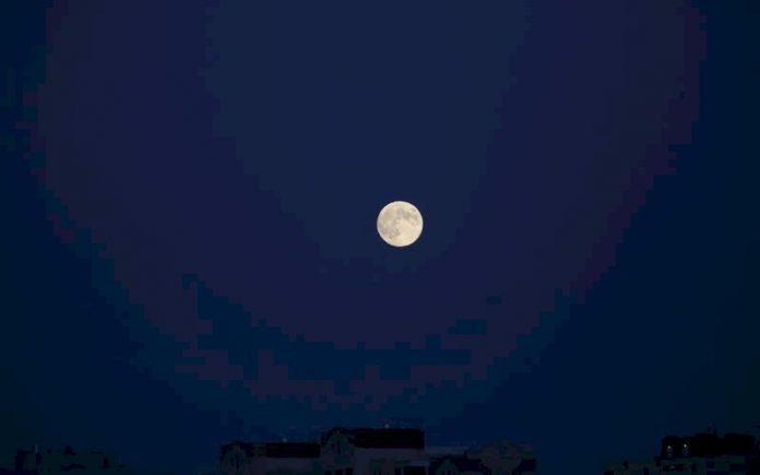 luna_p74489