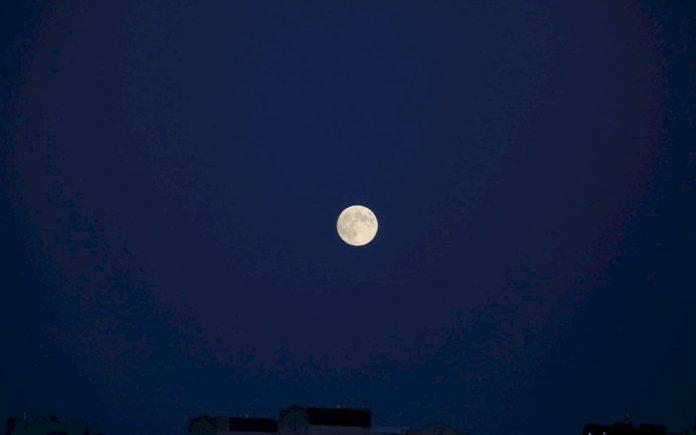luna_p34534